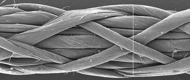 Одностенные углеродные нанотрубки