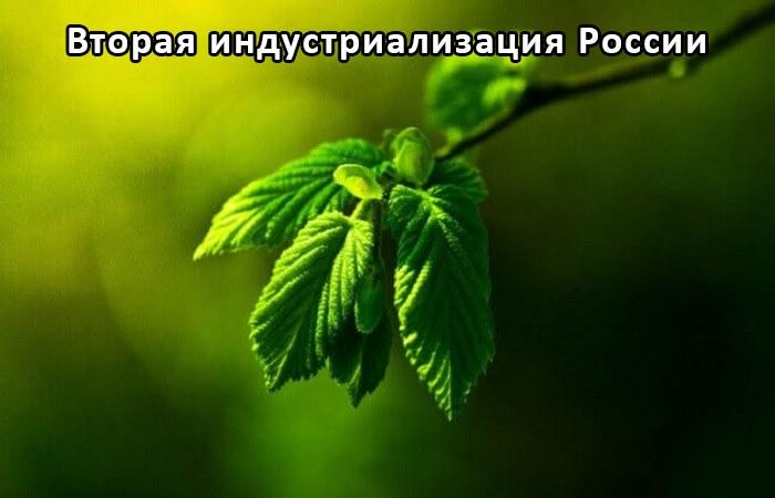 Минеральный сорбент для ликвидации разливов нефти и пр.