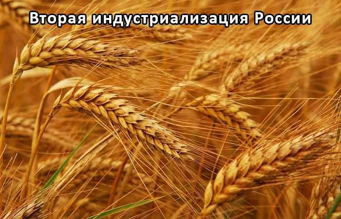 Зерновые сеялки