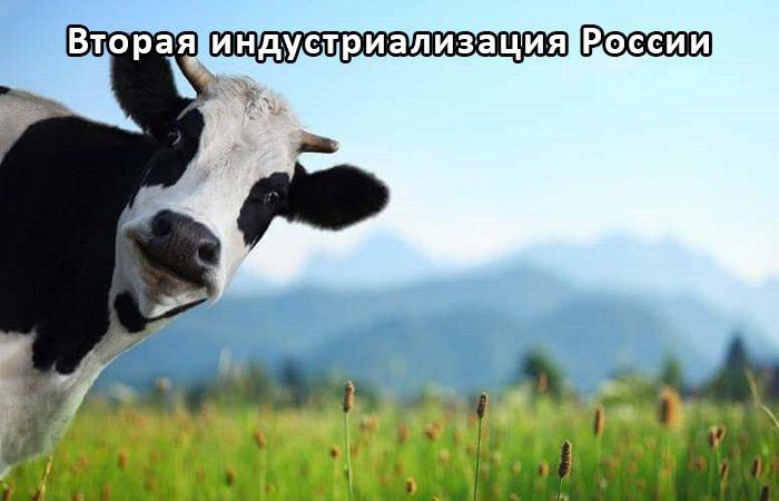 "Оборудование для производства комбикорма - установки ""БКУ-Универсал"""