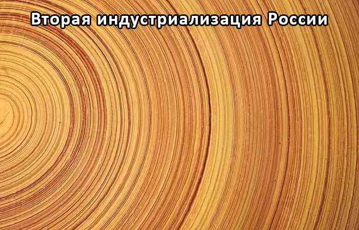 Глубокая пропитка древесины - импрегнация древесины