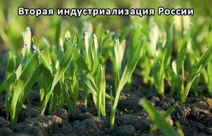 Гуминовые препараты - стимуляторы роста и развития растений