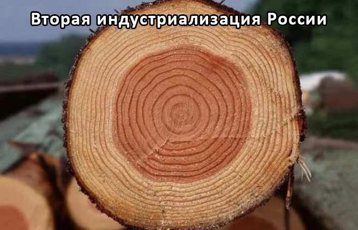 Программно-аппаратный комплекс по сушке древесины