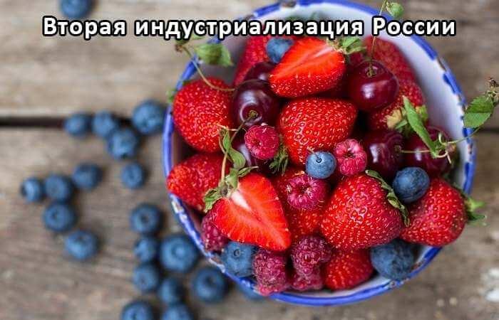 Экологическая фруктовая, овощная и ягодная тара многоразового использования