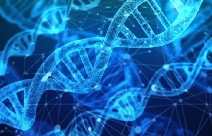 Компьютер на основе ДНК
