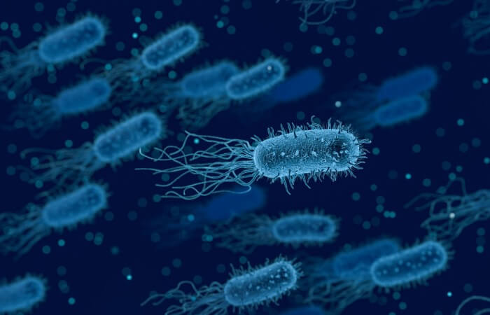 Экспресс-метод анализа инфекций