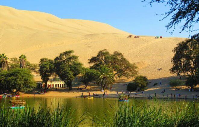 Озеленение пустыни
