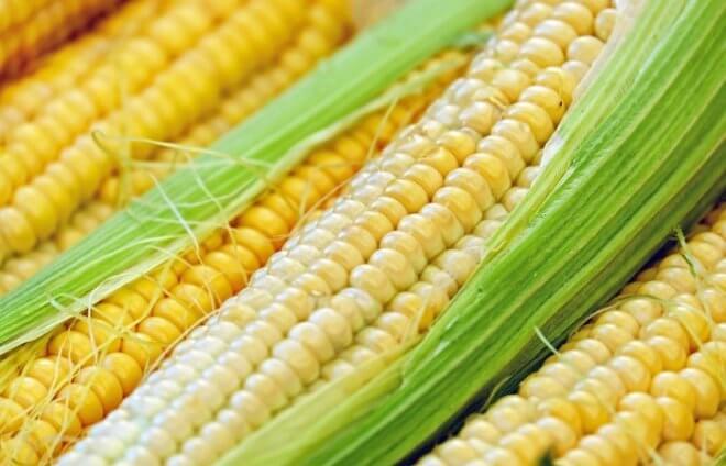 Урожайность кукурузы в странах мира и России