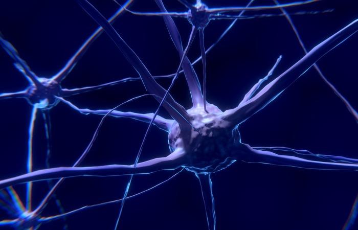 Искусственные нейроны